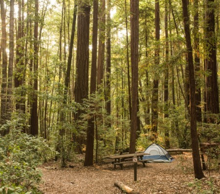 Blind Camping Enthusiast Wins Initial Victory in California False Claims Act Case Against Fortune 500 Company